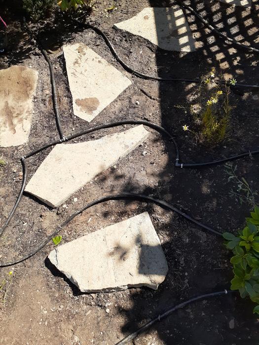 completed-sprinkler-system-installation-01